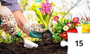 Jigsaw puzzle - Gardening
