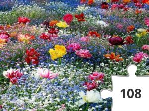 Jigsaw puzzle - bloemenzee
