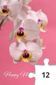 Jigsaw puzzle - Orchids by Miguel Á. Padriñán from Pexels