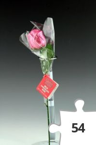 Jigsaw puzzle - Hot Stuff chocolate rose, pink variant