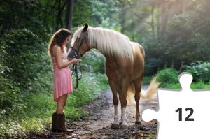 Jigsaw puzzle - Horse and Lady by Jennifer Murray