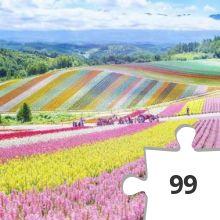 Jigsaw puzzle - Japan