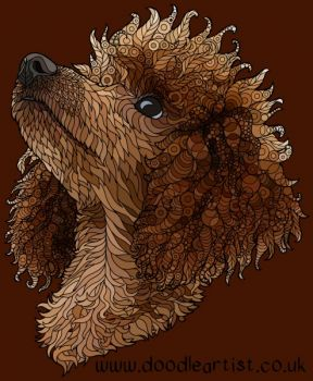 poodlecoloured
